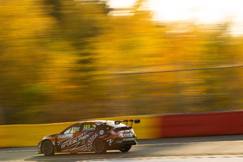 Lloyd aiming high in TCR Europe season finale